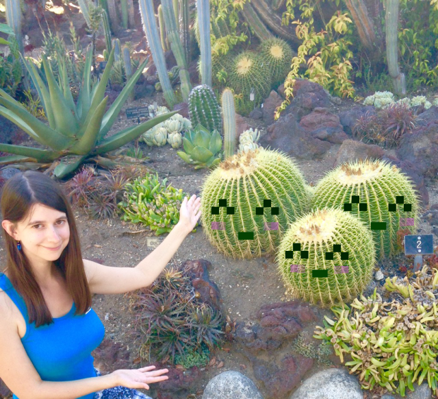 CactusPetsinRL